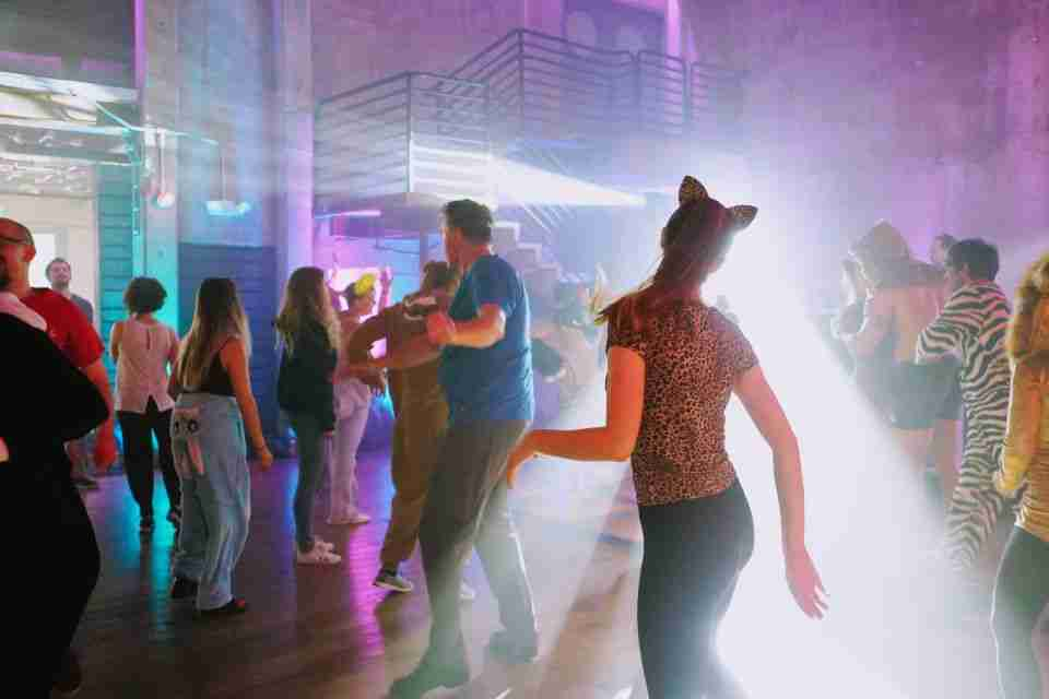 Party DJ-Event-DJ-People Dancing at Costume Themed Birthday Celebration-near Savannah GA