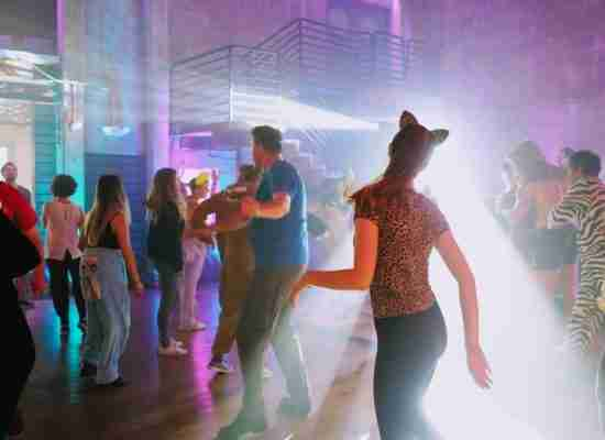 Party DJ-Event-DJ-People Dancing at Costume Themed Birthday Celebration-near Savannah GA