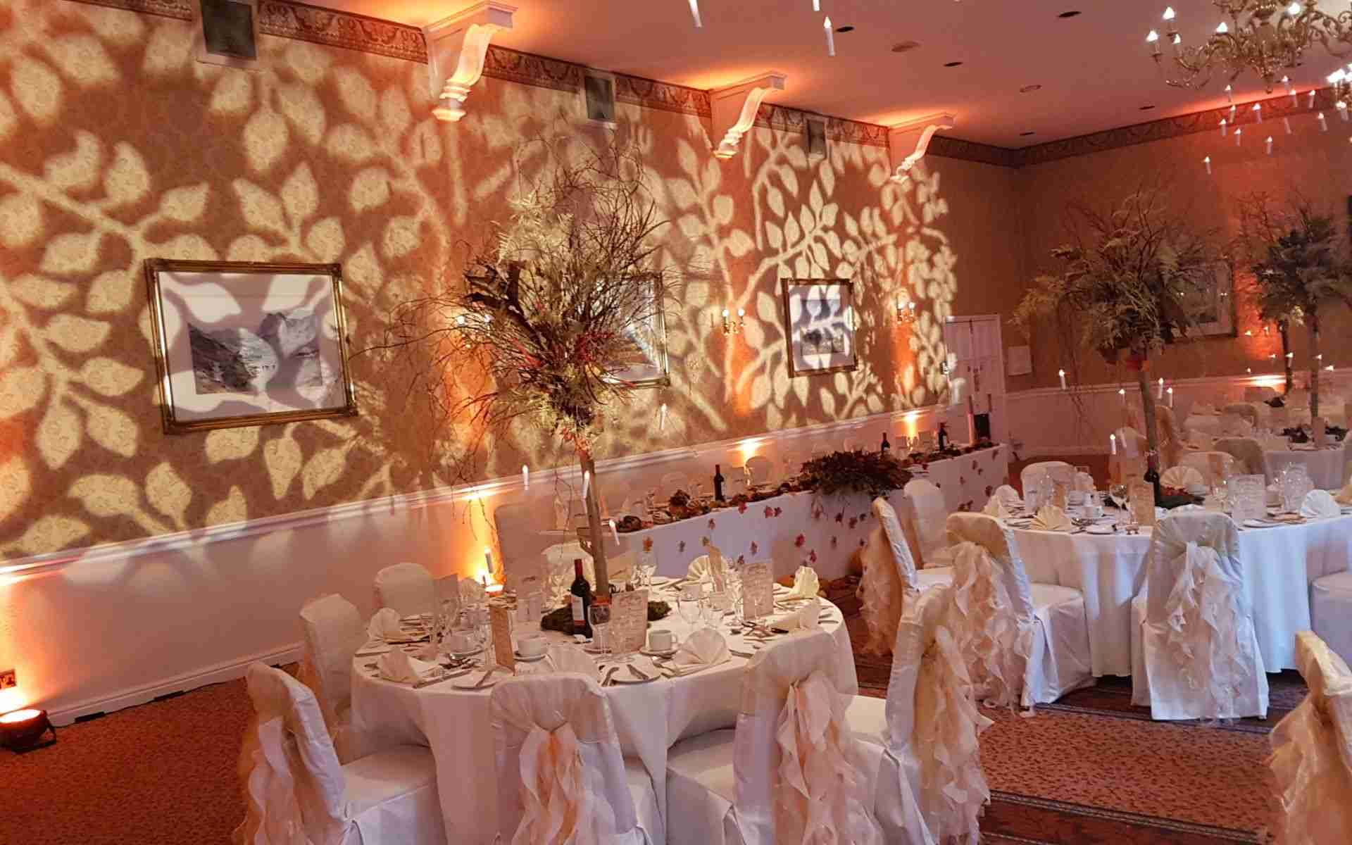 Wedding DJ Savannah_Rose Gold-Uplighting-with-Leaf-Effect-Wall-Projection